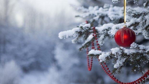 Українці розповіли, де зустрінуть 2019 рік: новорічна ялинка не в тренді