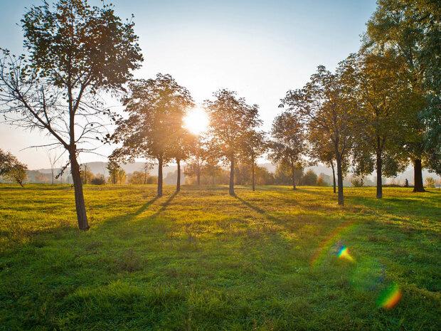 Погода на 7 вересня: осінь потішить українців теплом
