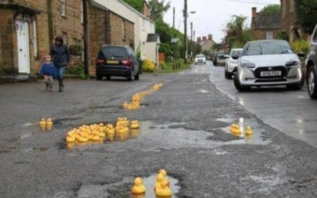 """Качечки допомагають британцям боротися з місцевим """"Укравтодором"""": фото"""
