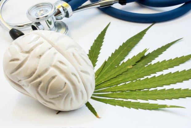 Врачи усомнились в целебных качествах марихуаны