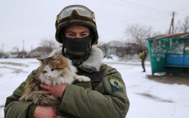 Фронтовые любимцы: как живет кошачье подразделение ВСУ