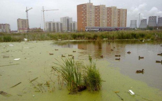 """""""Рай на болоте"""" или особенности """"элитного строительства"""" в столичном регионе"""