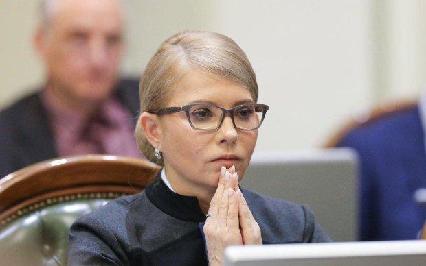 В Крыму умерла любимица Тимошенко Тигрюля