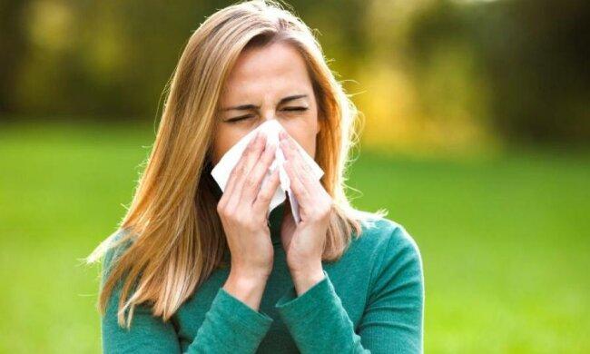Google подбав про алергіків