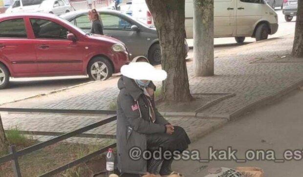 """Жінка за допомогою собак клянчить гроші: """"Гастролює за вказівкою начальства"""""""