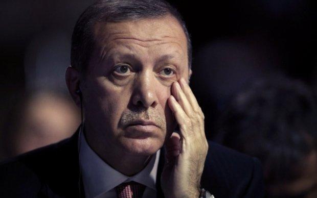 """Ердоган назвав """"панацею"""" від війни в Сирії"""