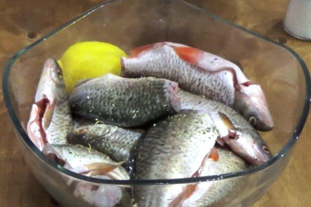 Річкова риба, скріншот: YouTube