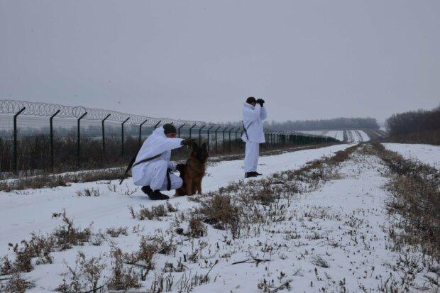 Овчарка-пограничник Лора, фото: facebook.com/DPSUkraine