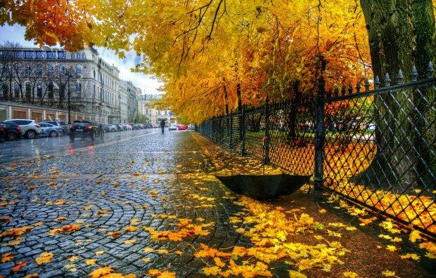 Погода, фото з відкритих джерел