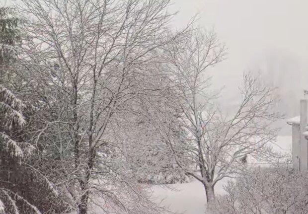 Погода взимку, фото: кадр з відео