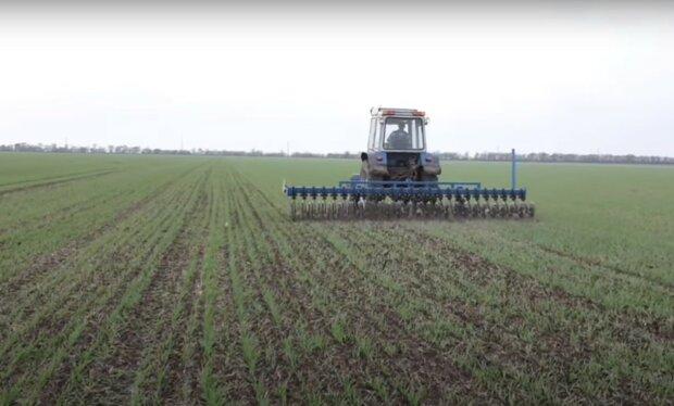 ринок землі, скріншот з відео