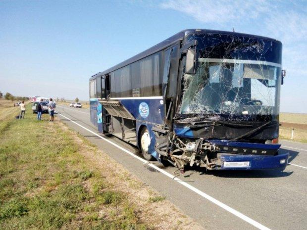 Понівечені останки всюди: переповнений автобус потрапив у страшну аварію, багато жертв