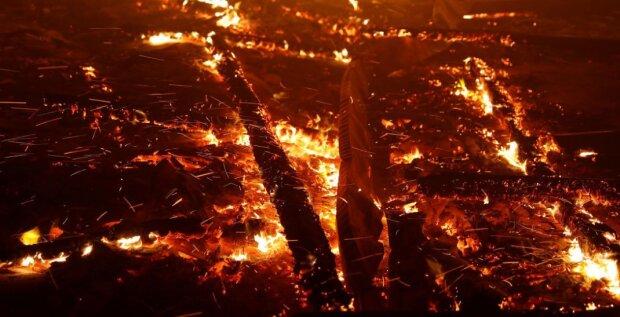 Каліфорнія у вогні, скріншот з відео