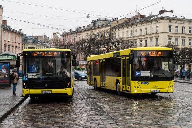 Львів'янам дозволили гуляти цiлу нiч: як ходитиме транспорт на Новий рік