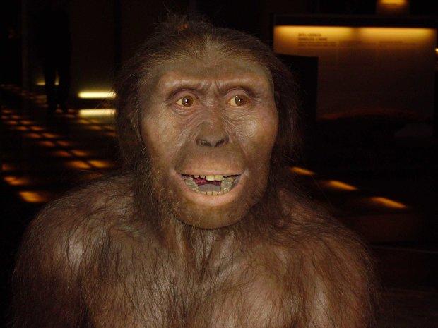 Сенсаційне відкриття вчених про предків людини: такого ви точно не очікували