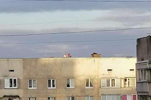 Дети на крыше, фото: Горячая линия Львова