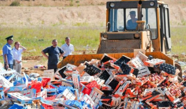 Война России с продуктами: уничтожено уже 700 тонн
