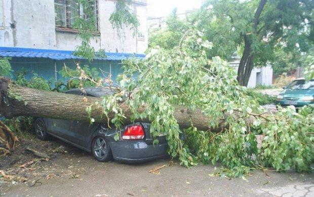В сети показали последствия жуткого урагана в Луганской области