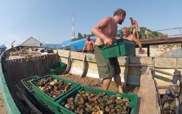 Одеські чиновники знайшли собі годівницю на мільйон