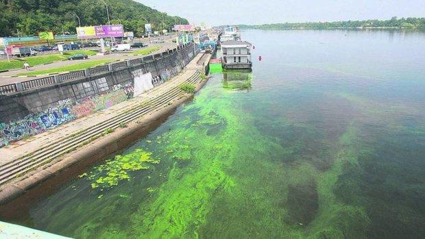 Дніпро потопає у смердючій гидоті: на що перетворилася водна артерія Києва, - пекельні кадри