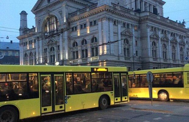 автобусы Львов / фото: Znaj.ua