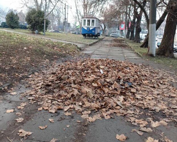 Чернівчани показали ганьбу комунальників одним фото: навалили купу біля вокзалу