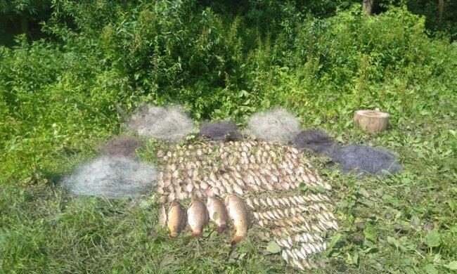 """У Тернополі """"чорні рибалки"""" потрапили у сіті власної жадібності - ось вам і щука"""
