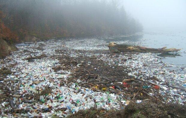 Забруднення, фото pxhere