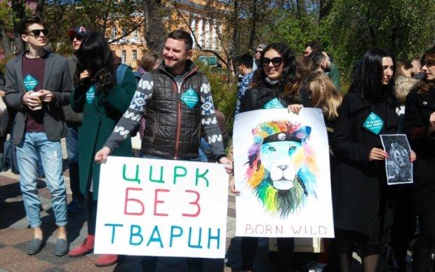Тисячі киян у день цирку протестували проти знущання над тваринами