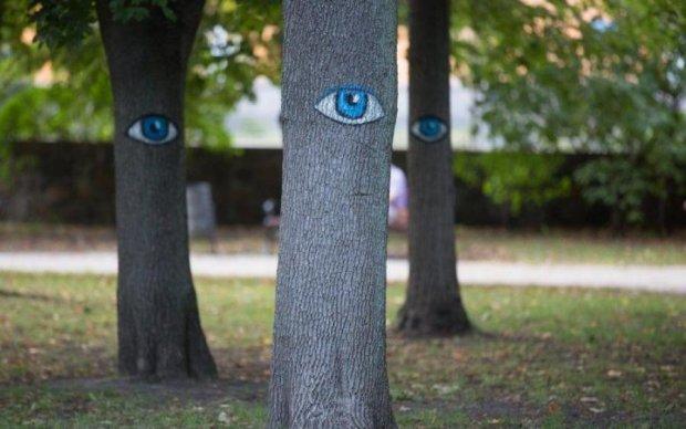 Так дешевше: українців хочуть ховати в парках і без труни