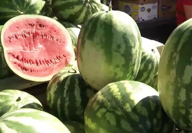Арбузы, кадр из видео