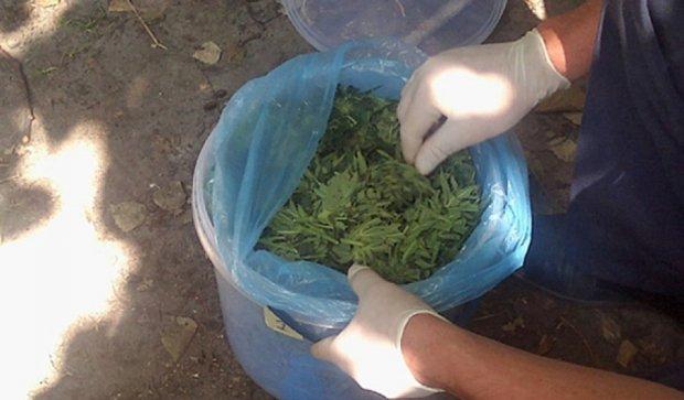 На Рівненщині правоохоронці вилучили 10 кілограмів марихуани (фото)