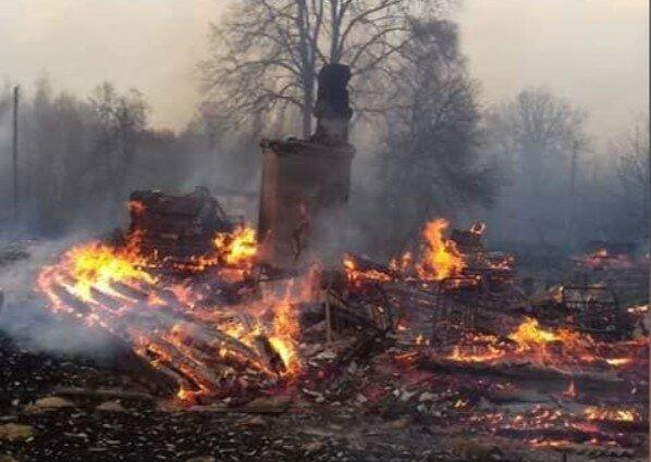 Пожежі в Житомирській області, фото: Соцмережі