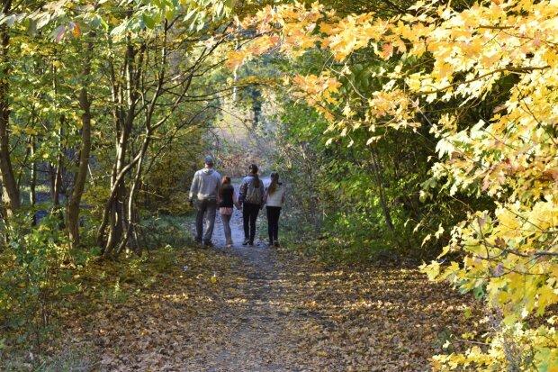 Осенний парк, фото: zhmerynka.city