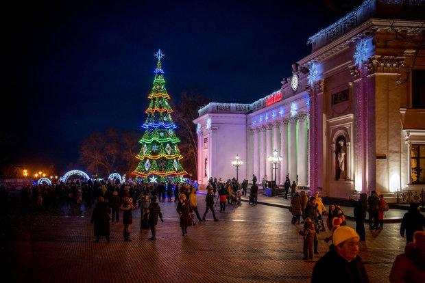 Українець зробив дівчині приємно вкраденою 6-метровою ялинкою: поліція не оцінила