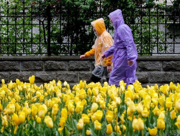 Погода в апреле фото: Униан