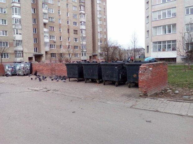 """Франковчан отдадут под суд из-за платежек за мусор - """"Должок!"""""""