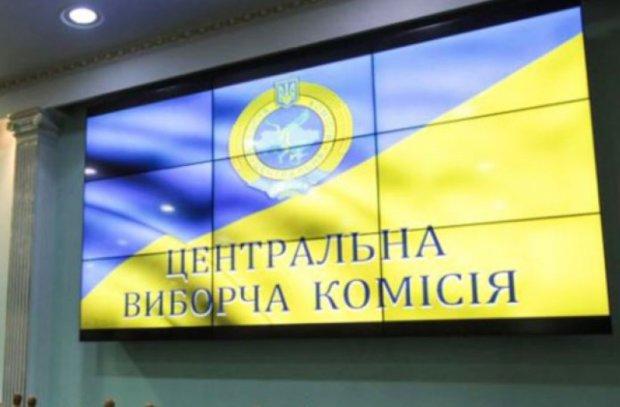 "Організатори ""сітки Порошенка"" зареєстрували клона Зе-Кандидата по 95 округу"