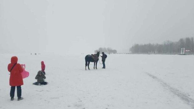 Тернополянин заставил лошадь встать на коньки на замерзшем пруду: чуть не скормил рыбам