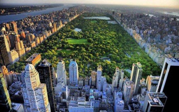 Где дышится легко: спутник показал самые зеленые города мира