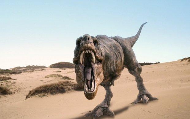 Палеонтологи открыли новый вид динозавра