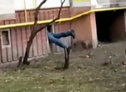 Робин Гуд, фото скриншот с видео