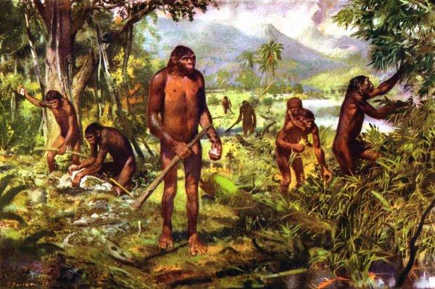 Гусиная кожи и зубы мудрости: отпечатки, оставленные на нас давними предками