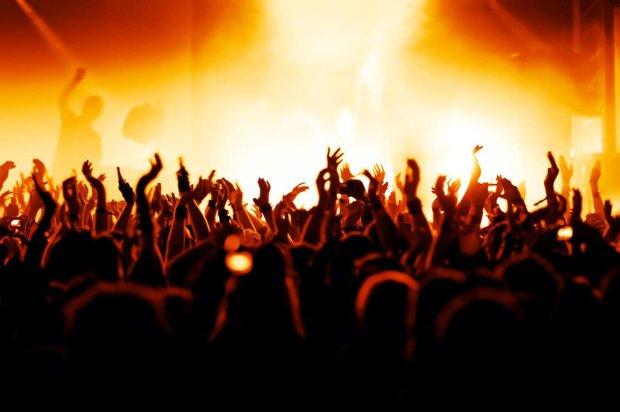 ВГермании полиция прекратила рок-концерт занацистское приветствие