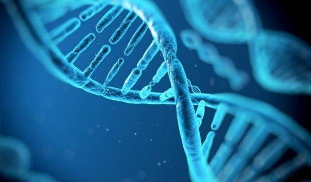 Учені записали інформацію в геном бактерій