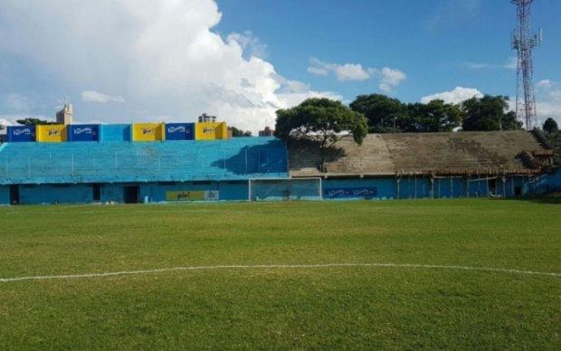 Парагвайский футбольный клуб построил трибуну вокруг дерева