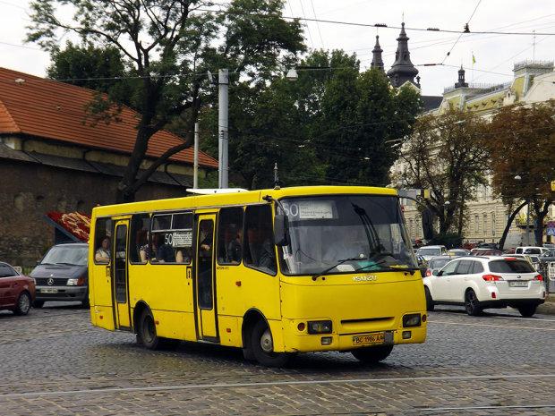 Маршрутки по-новому: когда отремонтируют транспорт в Львове