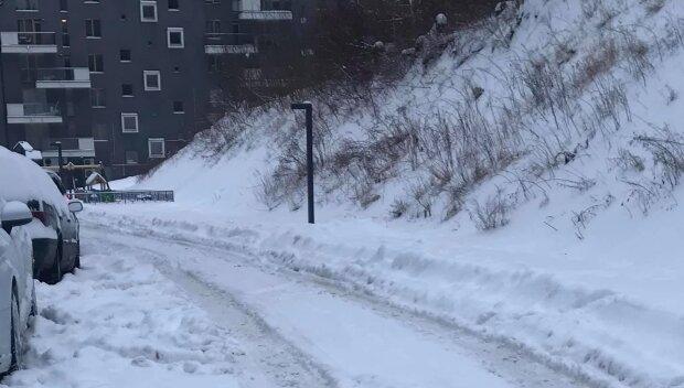 Снег во Львове, фото Николай Вышиванюк: Facebook Горячая линия города Львов