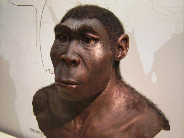 Вчені знайшли праматір людства, у кожному з нас її гени: коли і де вона жила