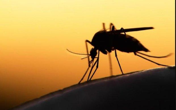 """Кровопивці-гурмани: як комарі вибирають """"найсмачніших"""" людей"""